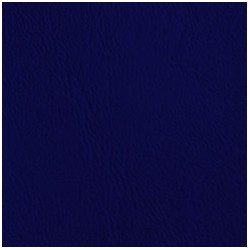 Poseidon Azul Real